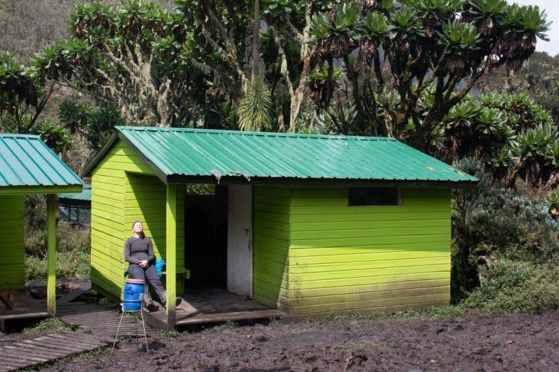 Rwenzori hut
