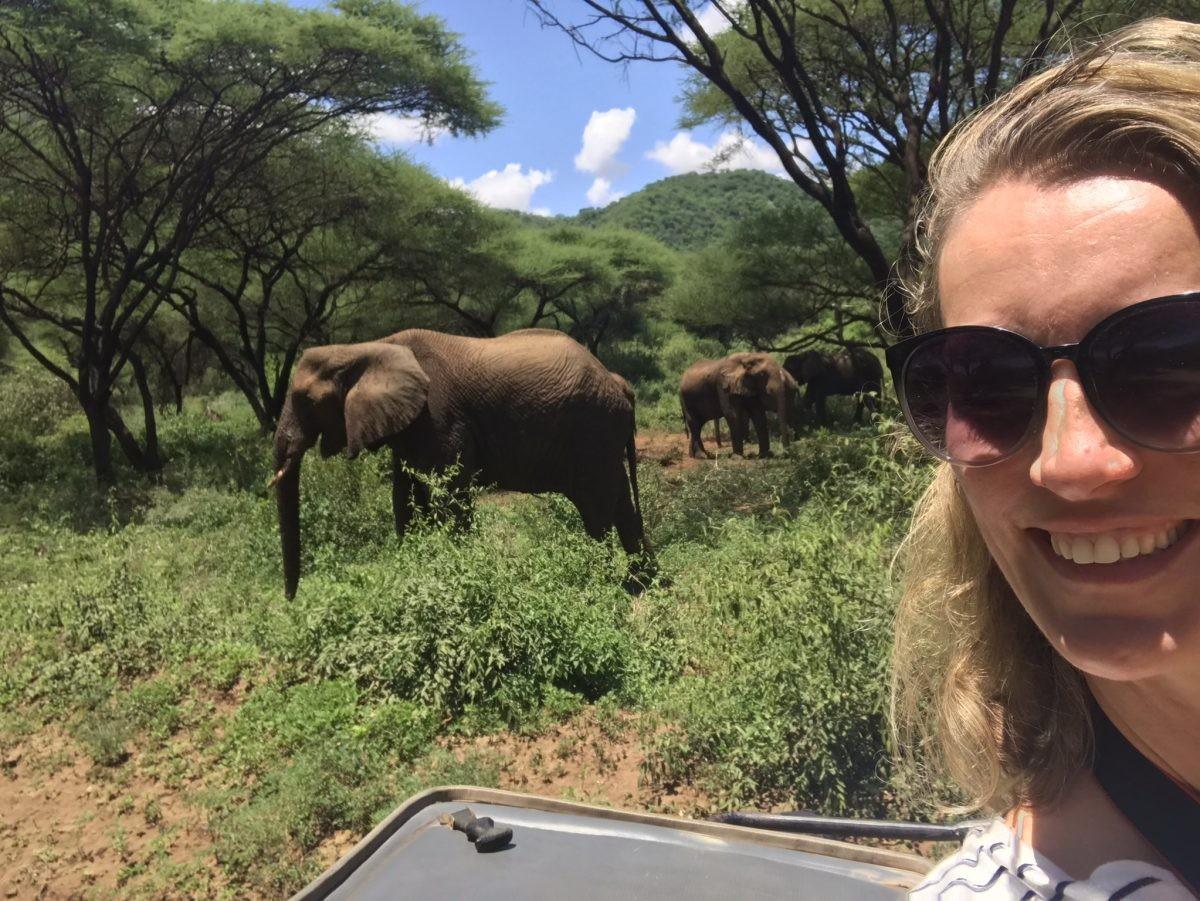 Letterlijk tussen de olifanten! Foto: Pauline van der Waal