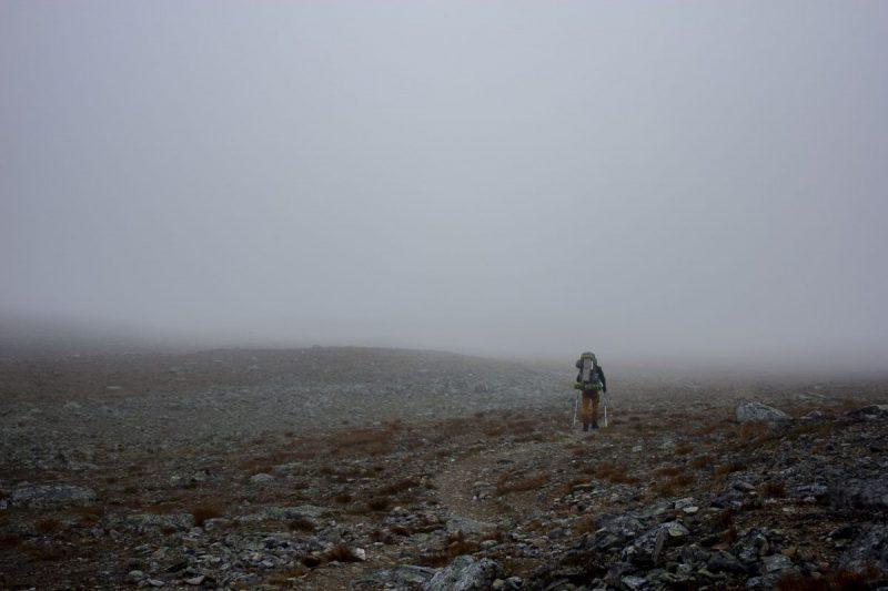 De tundra verdwijnt in een grijs deken