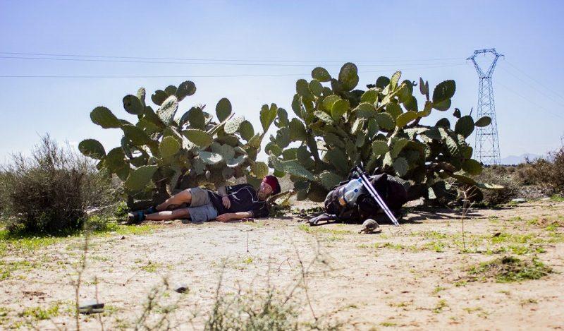 Mijn meest domme foto; de stekels van deze cactus heb ik nog lang meegedragen