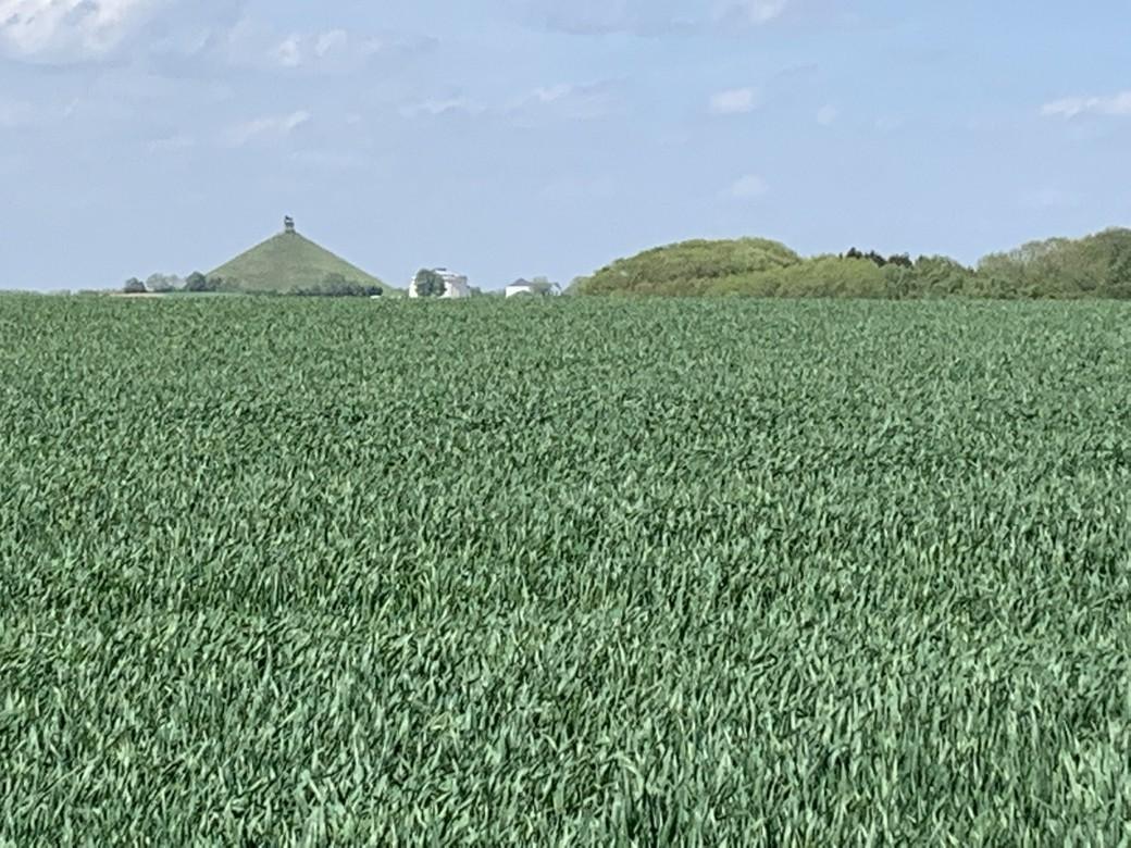 Aan de horizon piekt de pyramide van Waterloo.