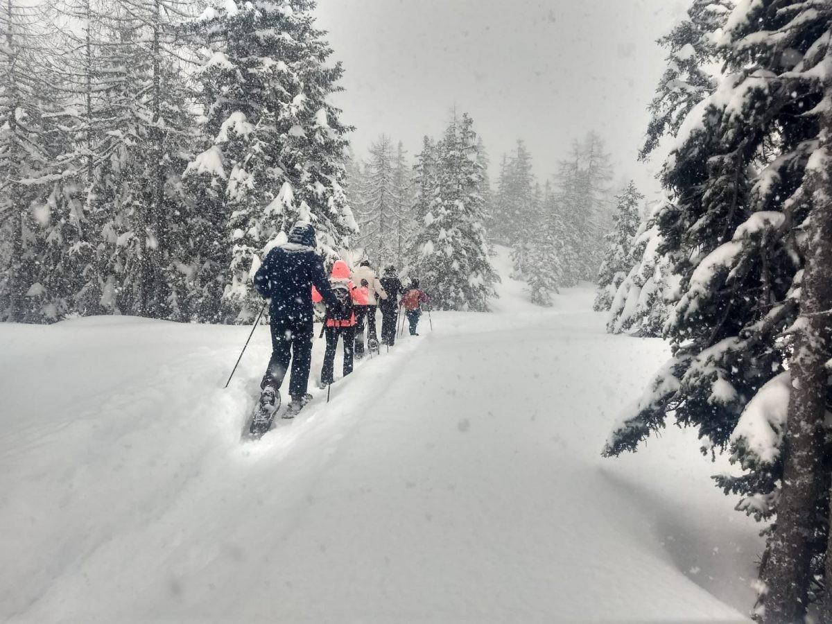 Als het sneeuwt is de winterwandelweg een super leuk alternatief voor skien! Foto: Sietske Mensing