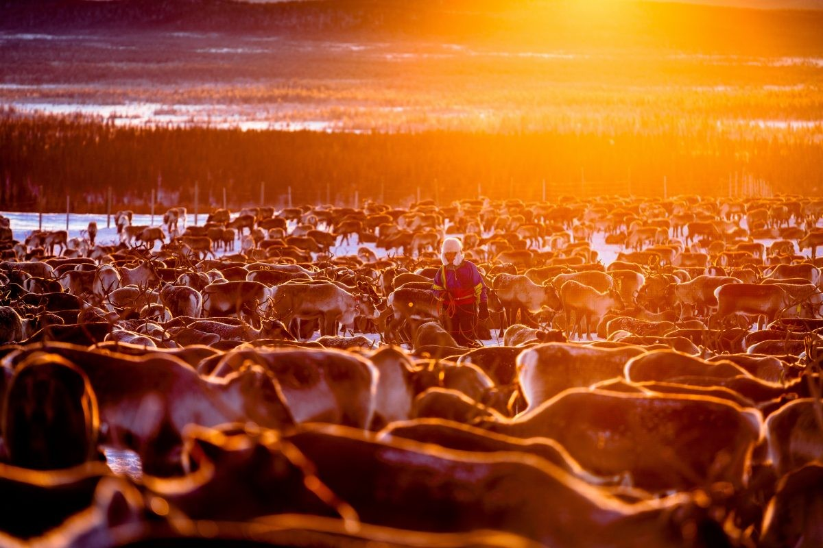 Lapland. Copyright: Carl-Johan Utsi