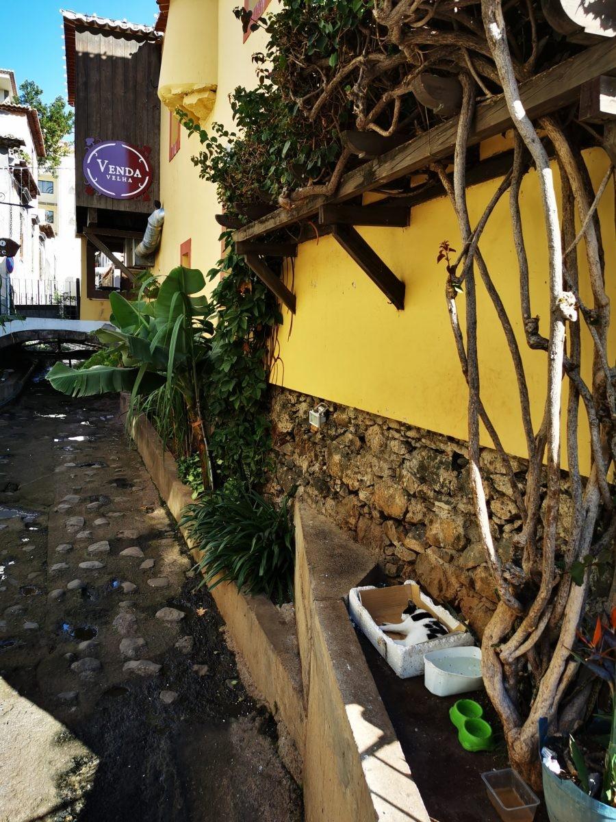 De leuke straatjes van Funchal