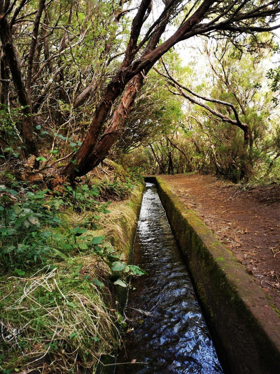 Levada walk Madeira