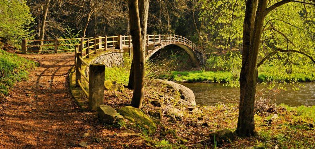 Hiking trail in Tsjechië