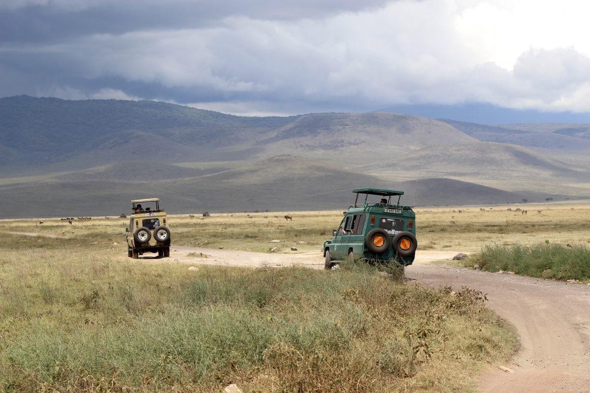 Zwerven door de immense Ngorongorokrater. Foto: Pauline van der Waal