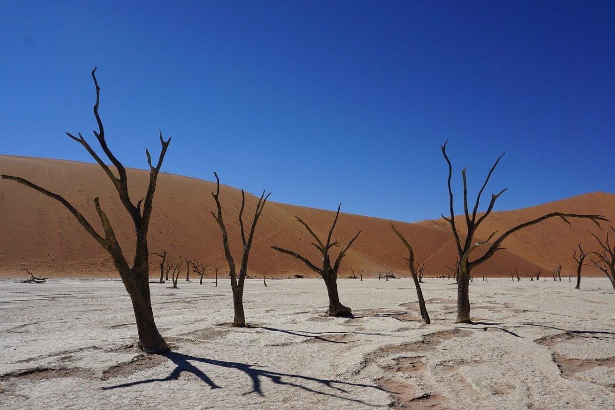 Sossusvlei in Namibië. Afbeelding van Jürgen Bierlein via Pixabay