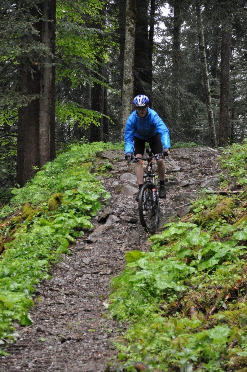 In het Bregenzerwald 2