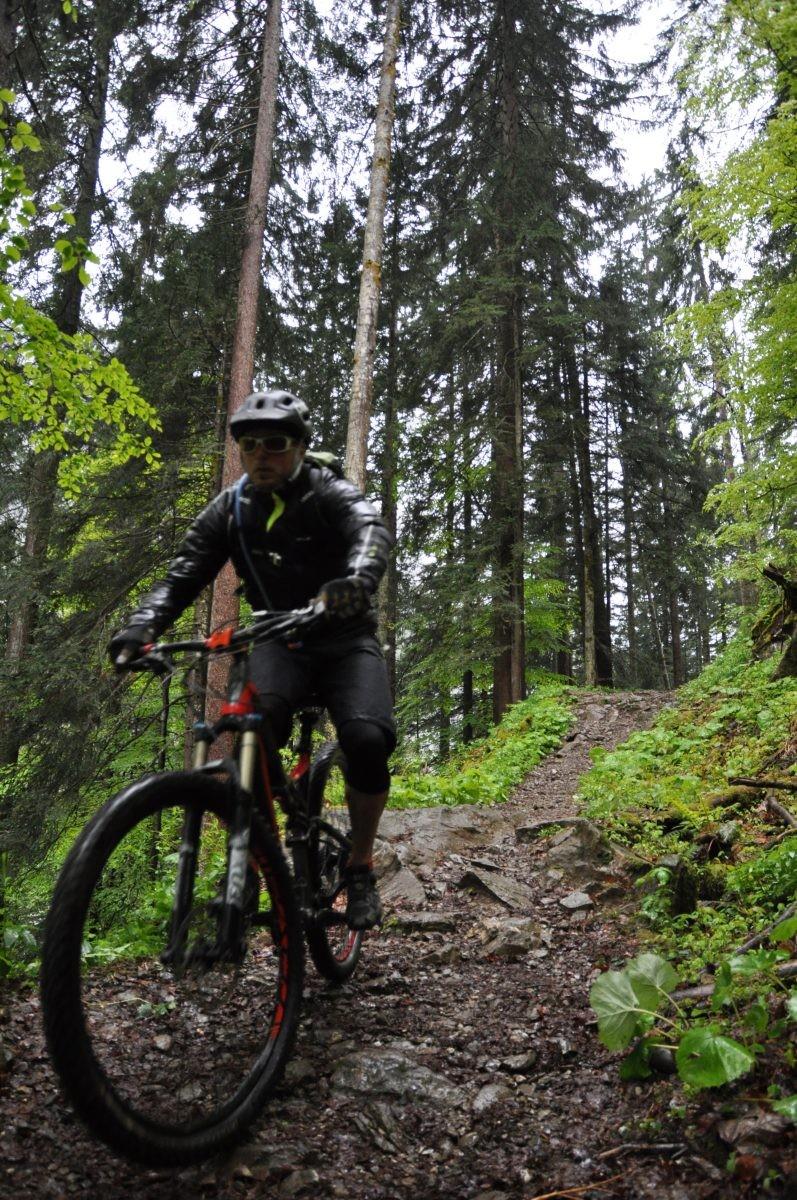 In het Bregenzerwald 3