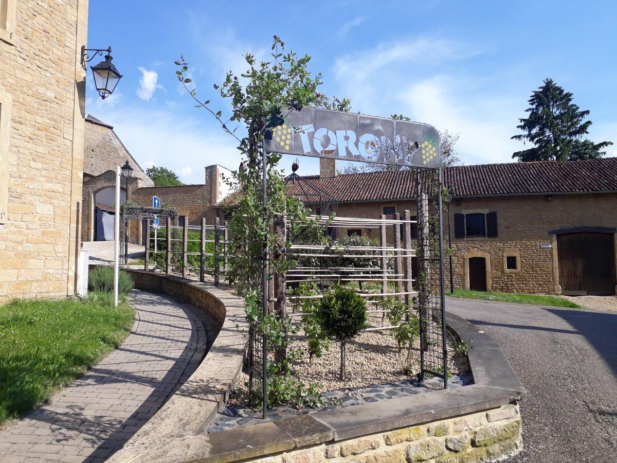 welkom in wijndorp Torgny