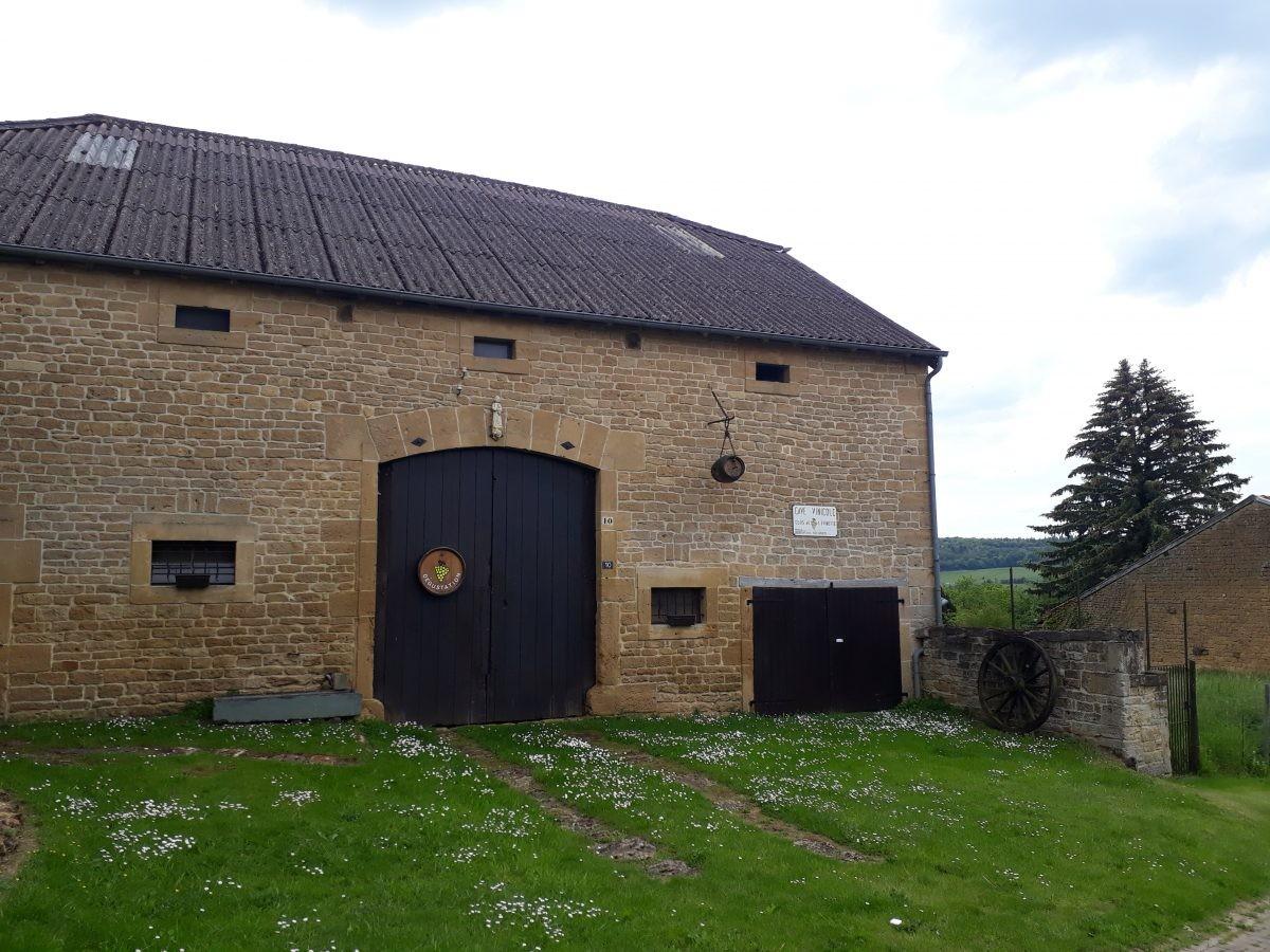 wijnproeven in Torgny