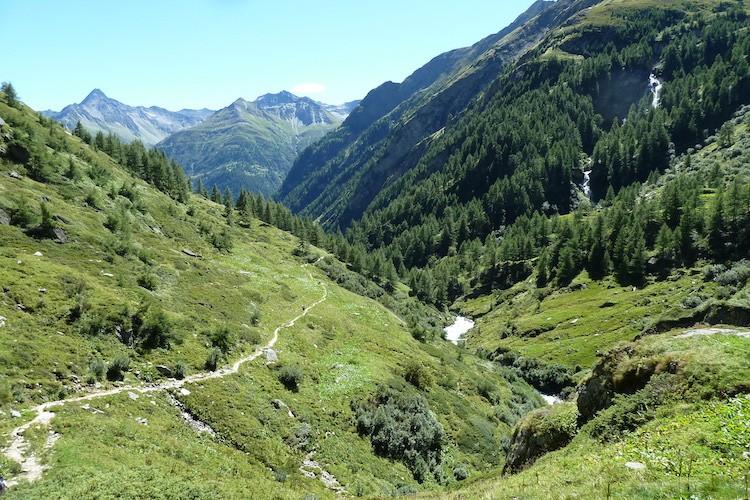 Een mooi, groen dal. Virgental Oostenrijk