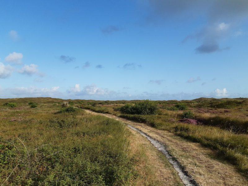 Onverhard wandelen Duinen van Texel