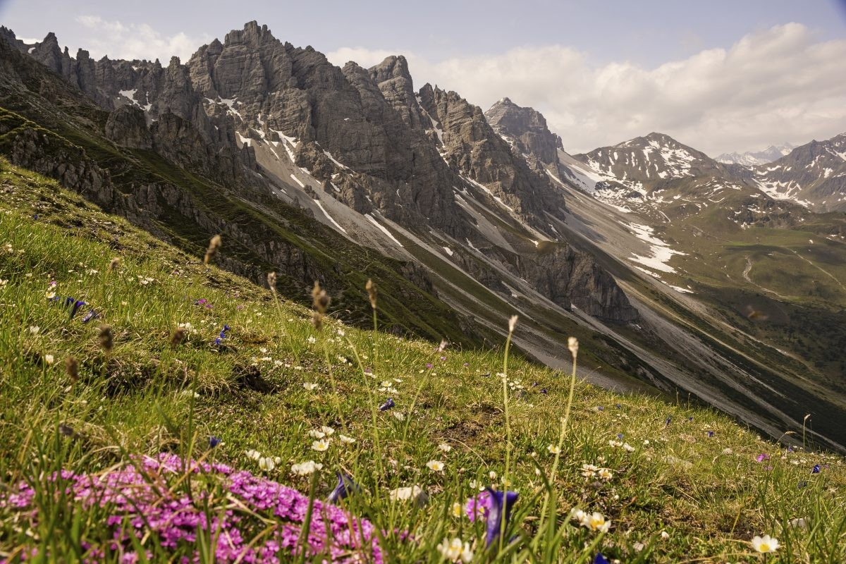 Door de bergen van Axamer Lizum. Foto: Innsbruck Tourismus Helga Andreatta