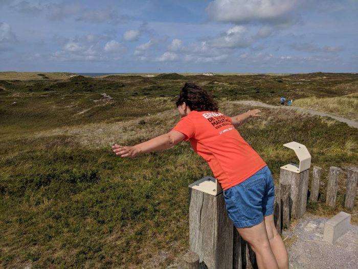 Zicht op Texels duinlandschap
