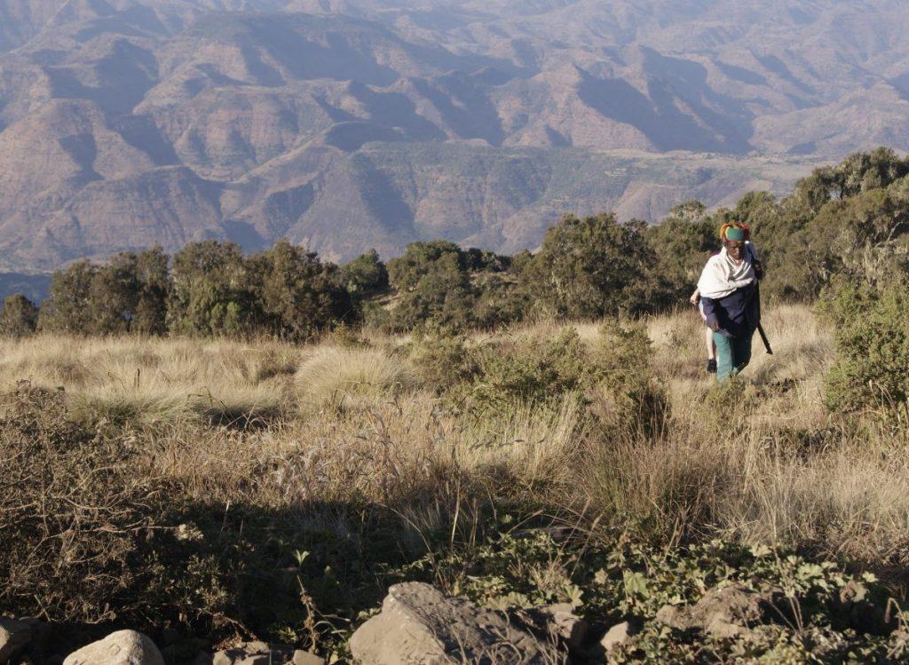 het Simiengebergte Ethiopië