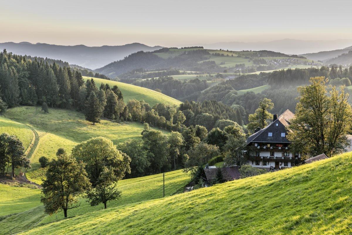 Het prachtige hooggelegen Hochschwarzwald ©Hochschwarzwald Tourismus GmbH