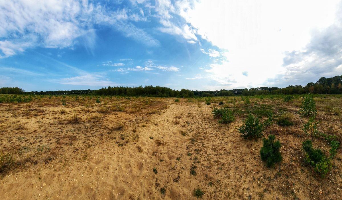 uitzicht Veluwe