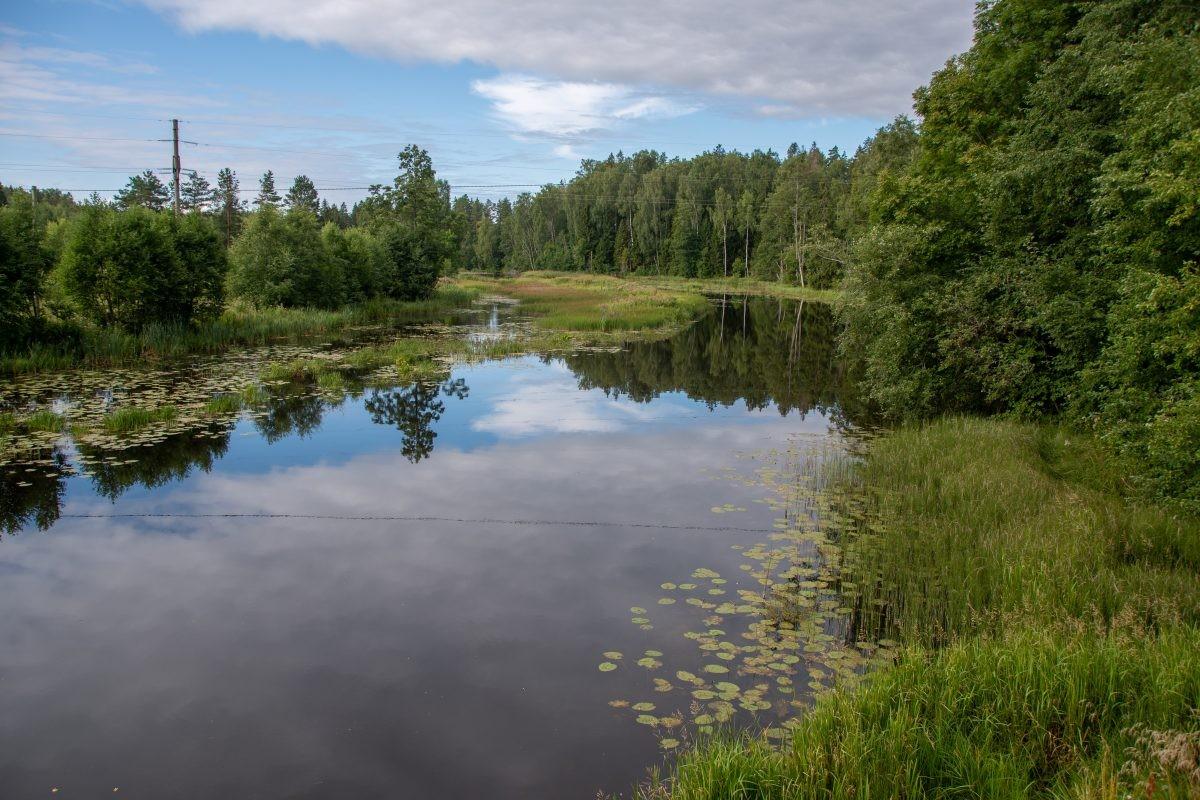 In de omgeving van Voose is veel water te vinden.