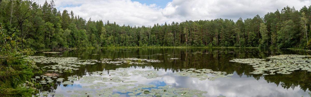 Panorama van een van de Estse meren