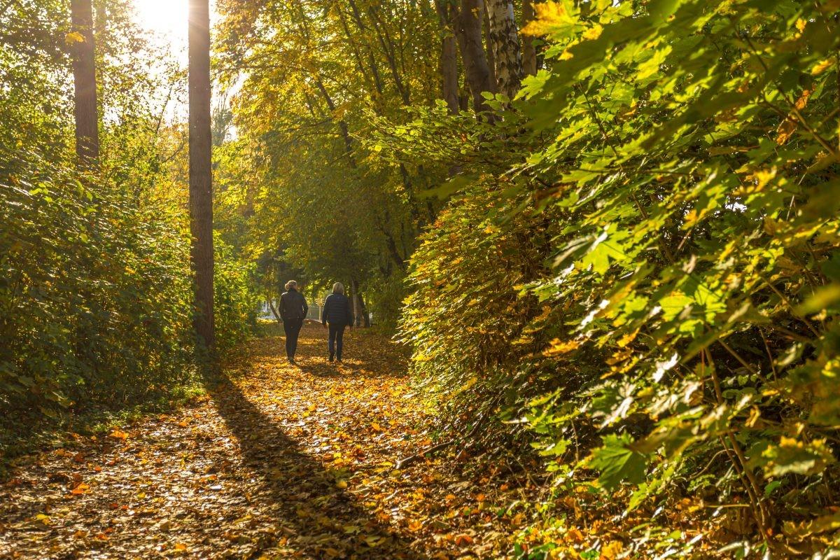Wandelen bij Günzburg. Foto: Philipp Röger