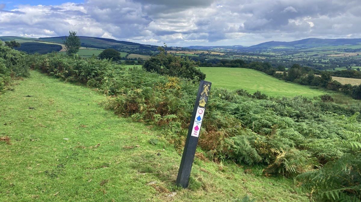 Uitzicht over de Wicklow Mountains bij Tinahely