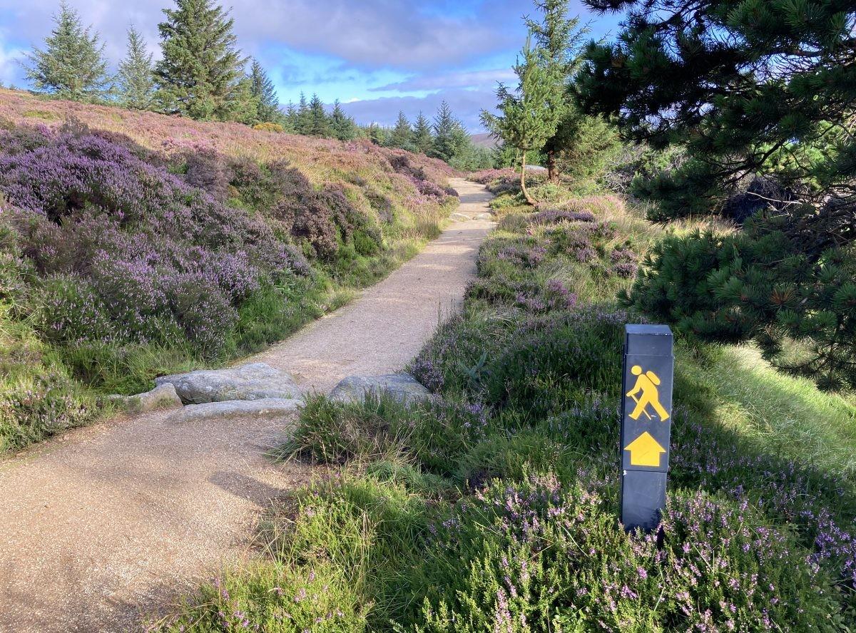 De Wicklow Way is de oudste langeafstandswandleing van Ierland