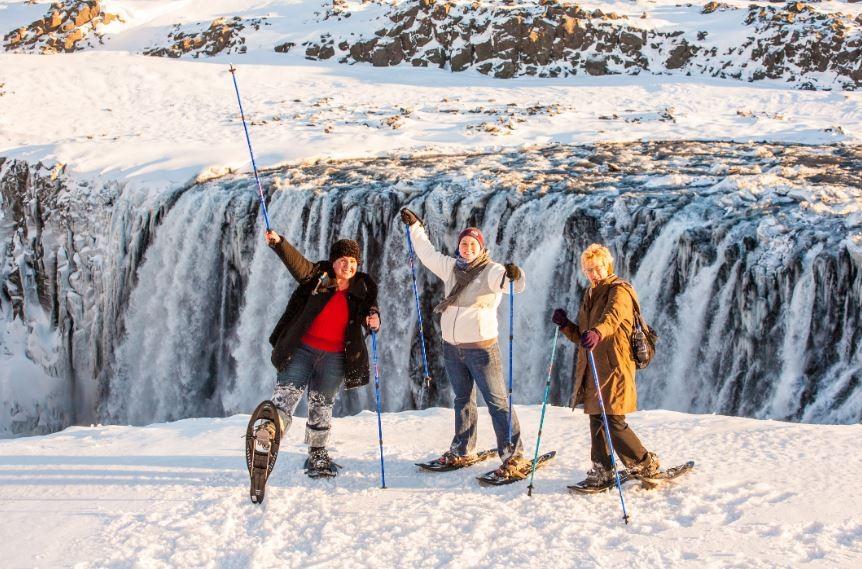 dettifoss-saga-travel
