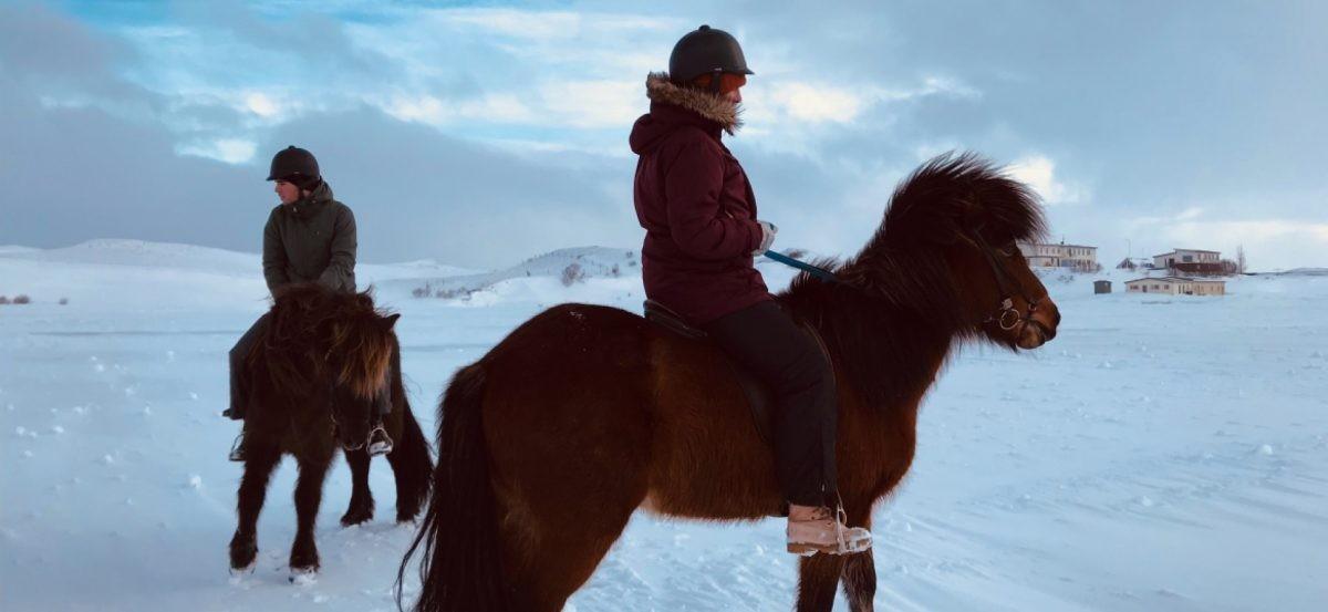 paardrijden-ijsland-winter