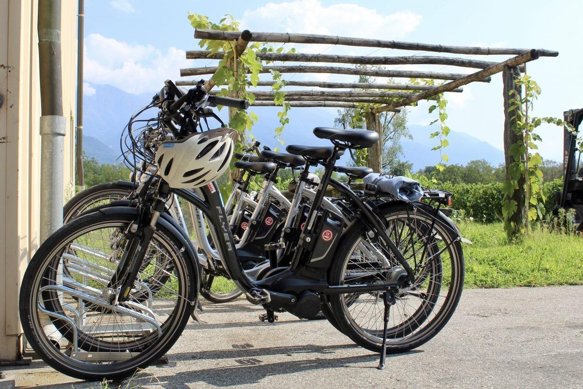 We parkeren de fiets bij de wijngaard
