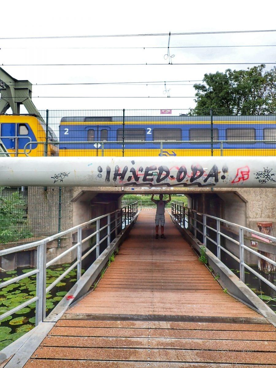 Spoorlijn Delft <> Schiedam