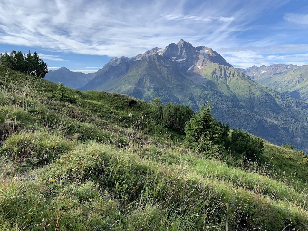 Afdalen naar Schnann Oostenrijk Lechtaler Höhenweg