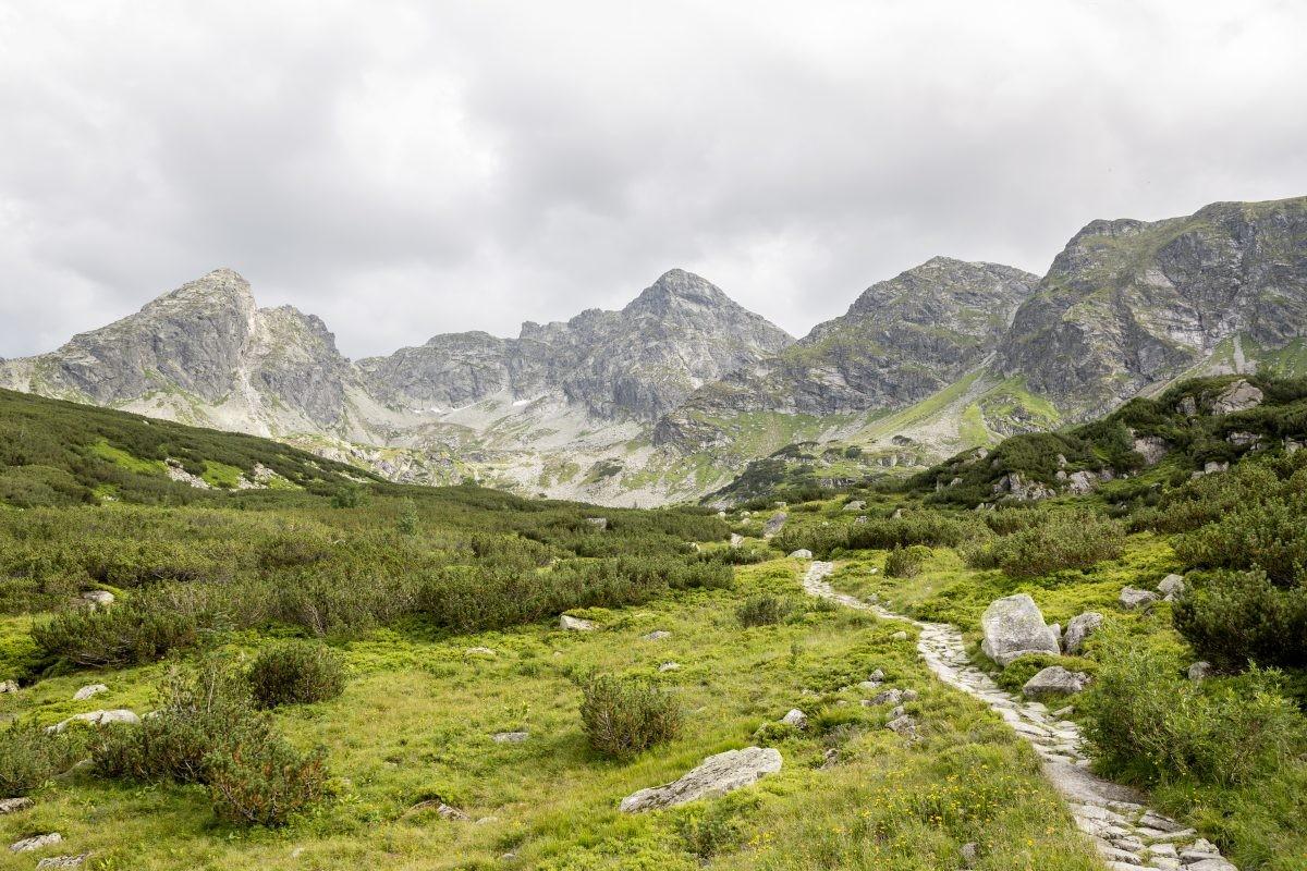 Uitzicht Tatragebergte