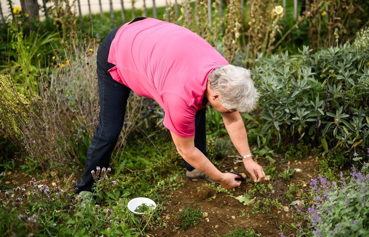 Kruiden plukken uit de tuin in de Schwäbische Alb