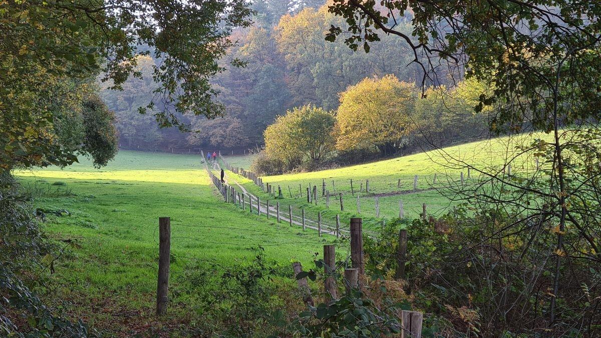 Afwisselend landschap op de N70
