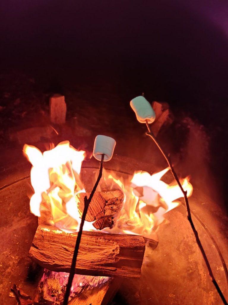 Lekker bij het kampvuur met marshmallows als toetje. Foto: Sietske Mensing