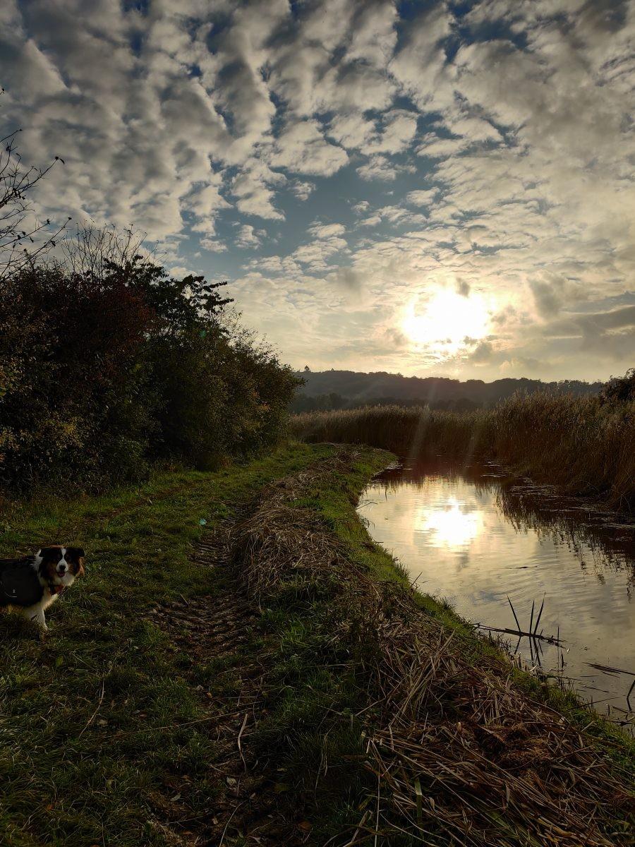 De zon begint al te zakken en wij moeten nog een stuk lopen! Foto: Sietske Mensing