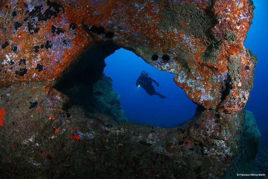 Ontdek de onderwaterwereld van Tenerife. Copyright Turismo de Tenerife