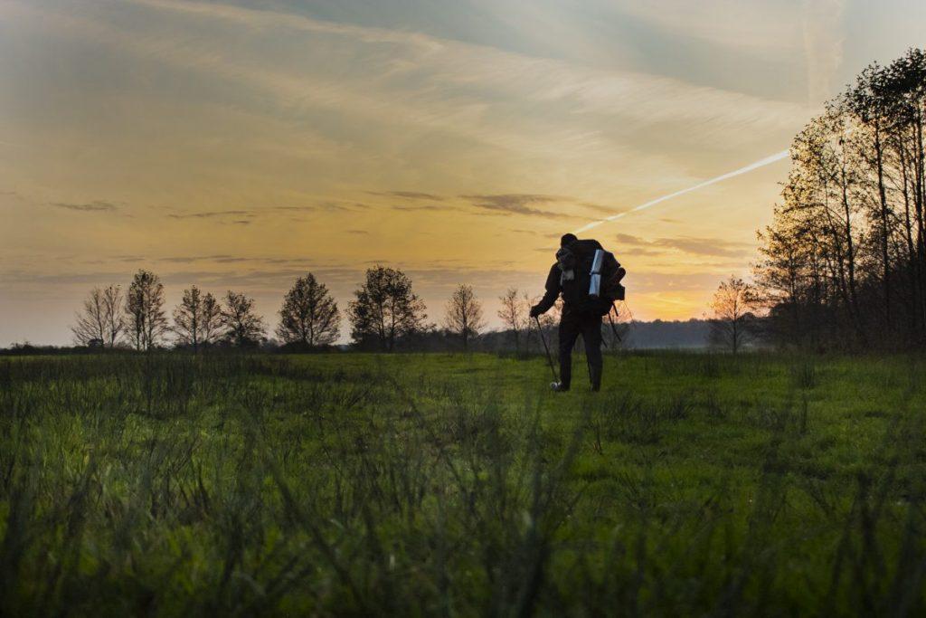 Het pad dat ik deel met de grazers, langs het Taarlosche Diep