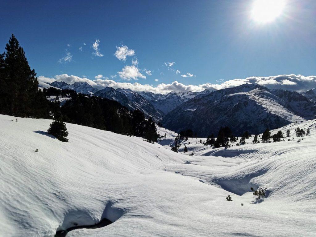 Besneeuwd landschap