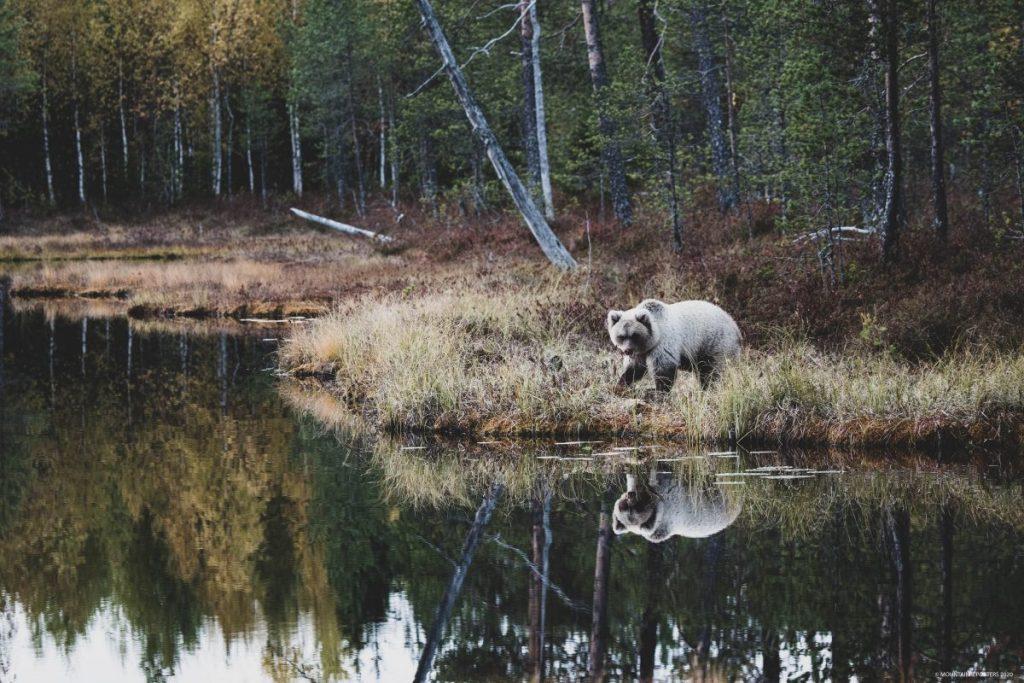 duurzaam Finland