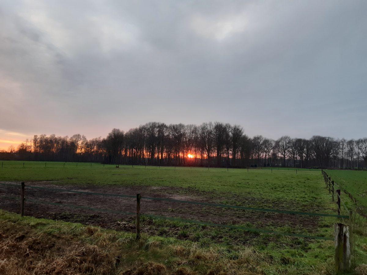 Ondergaande zon in het landschap