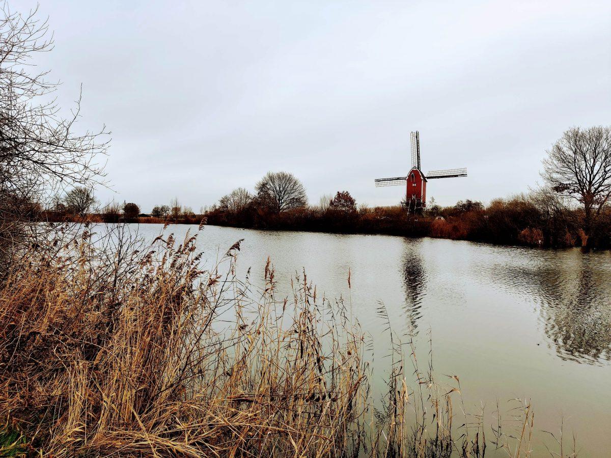Van bossen en heuvels naar Hollandse molens