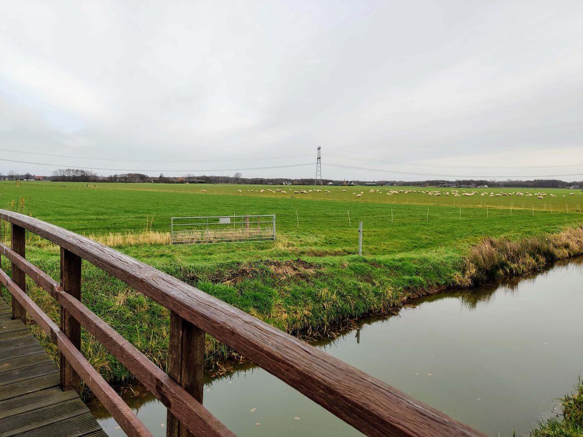 Weidse uitzichten over de polders