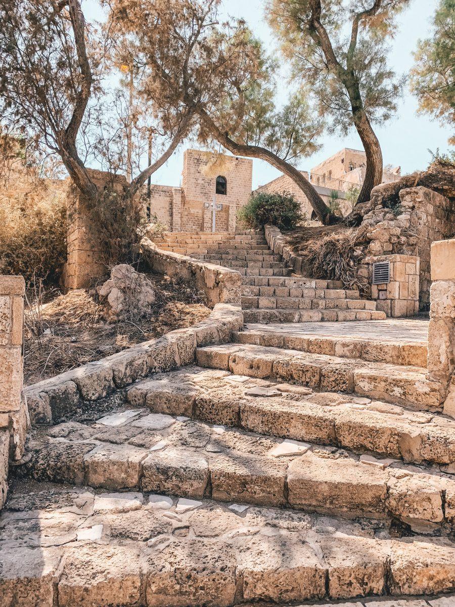 Cultuur in Israel