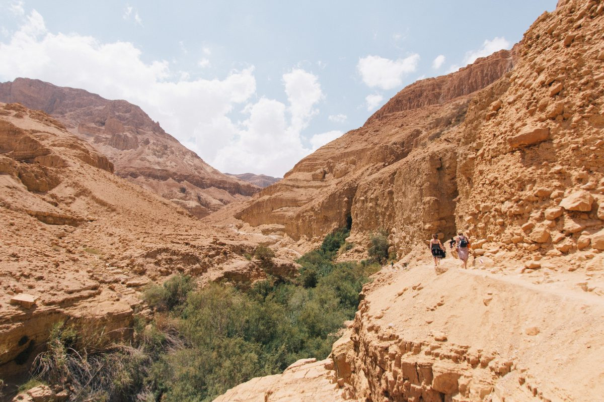 Natuur in Israël