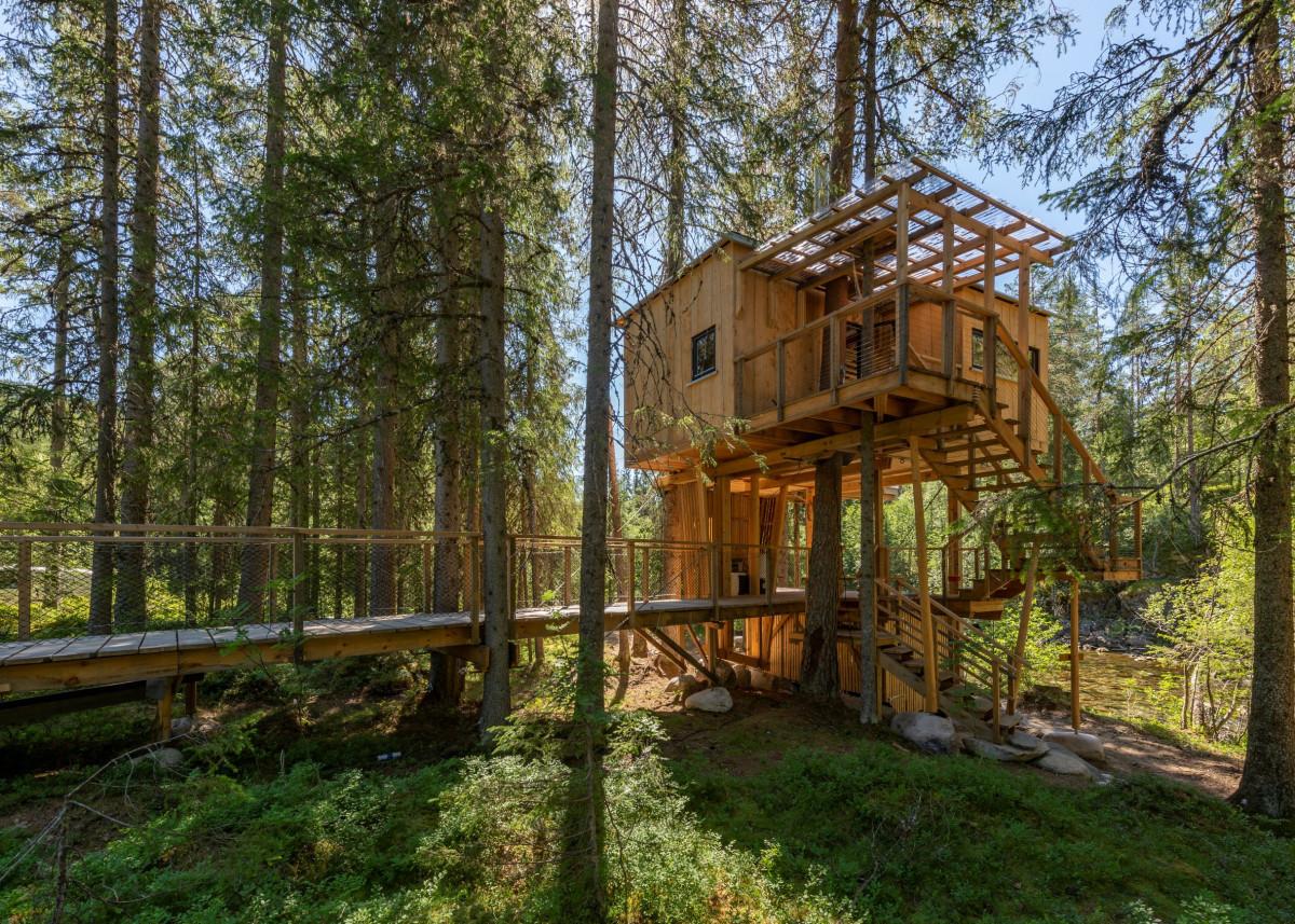 treetop-house
