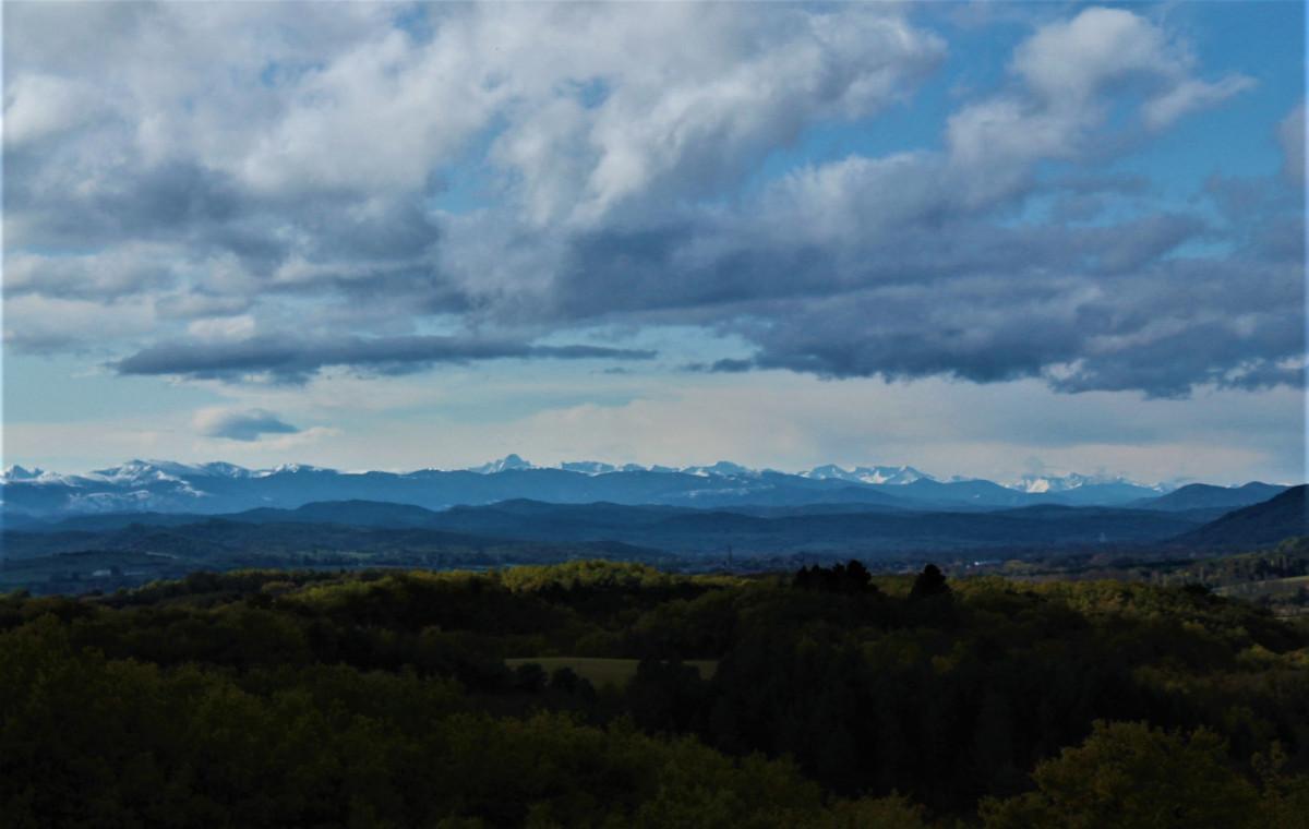Het uitzicht vanaf de heuvel naast mijn huis.