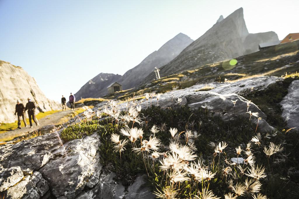 Wat voor wandelaar je ook bent, je gaat het prachtig vinden in Wallis. Copyright: Zwitserland Toerisme/Veysonnaz Tourisme